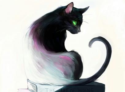 猫全高清壁纸和背景