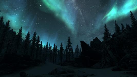 极光在冬季森林全高清壁纸和背景图像北极光