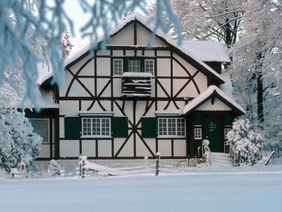 在冬季壁纸和背景图像的房子