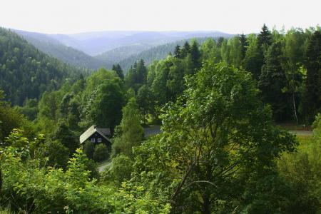 在森林里的房子全高清壁纸和背景