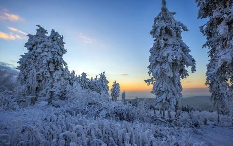日出下的雪景风光