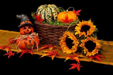 秋季静物5K视网膜超高清壁纸和背景