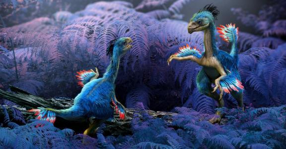 恐龙全高清壁纸和背景