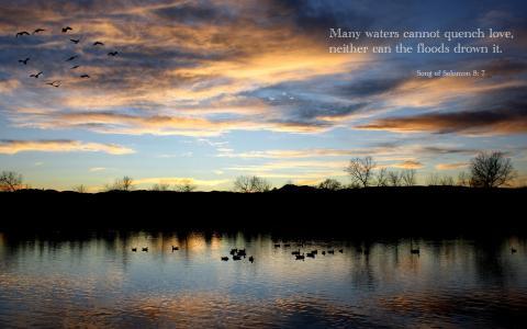 所罗门之歌8:7全高清壁纸和背景