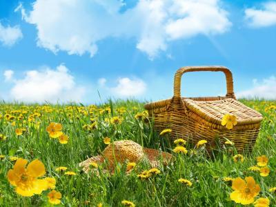 春季野餐全高清壁纸和背景图像