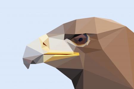 低聚猛禽全高清壁纸和背景