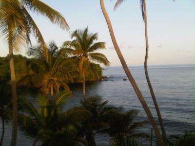 Bacolet,多巴哥全高清壁纸和背景图像