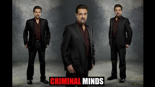犯罪心理全高清壁纸和背景