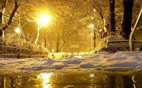 冬季全高清壁纸和背景