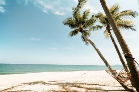 海滩全高清壁纸和背景