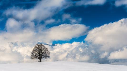 冬季5k视网膜超高清壁纸和背景