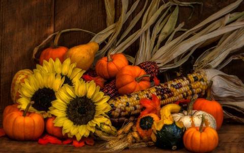 秋天的静物壁纸和背景