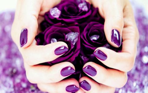 拿着紫色玫瑰充分的HD墙纸和背景的女孩